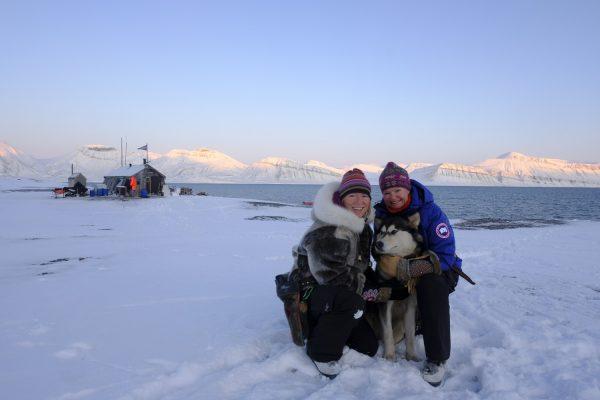 Snowy mountains, Arctic explorers, husky dog