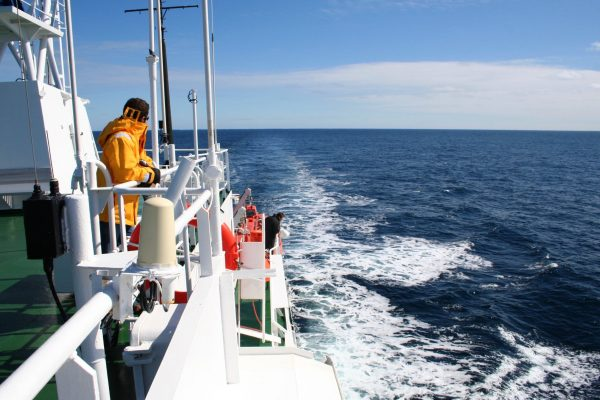 A man on board an expedition ship gazes out at the ocean