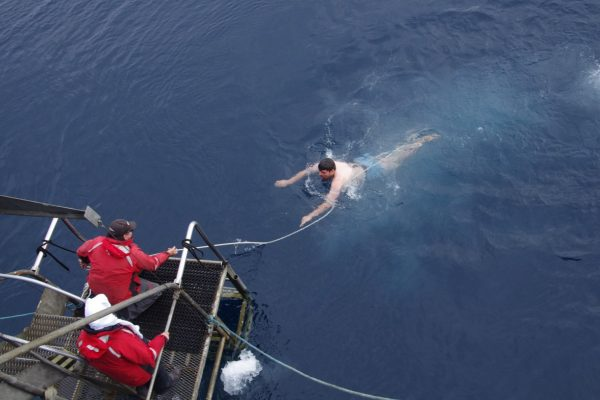 Man swims to ship platform after taking part in the Polar Plunge