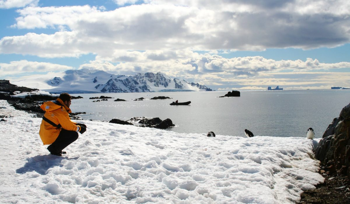 A man in a yellow jacket crouching down and admiring Antarctica