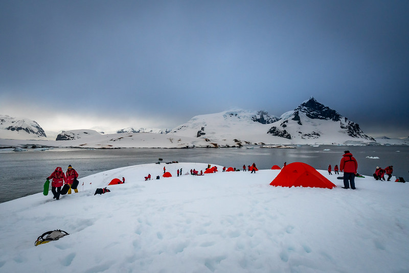 Travellers setting up red tents on the Antarctica Peninsula